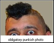 punkish's user image